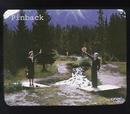 Pinback album cover
