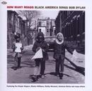 How Many Roads: Black Ame... album cover