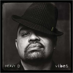 Vibes album cover