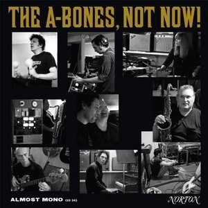 Not Now! album cover