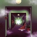 Weird Exits album cover