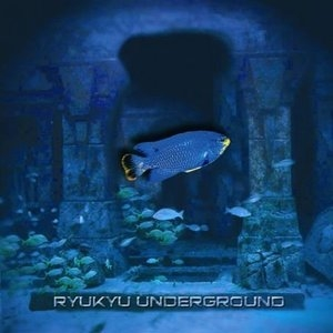 Ryukyu Underground album cover