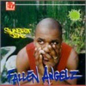 Fallen Angelz album cover