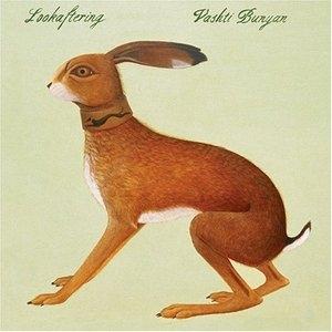 Lookaftering album cover