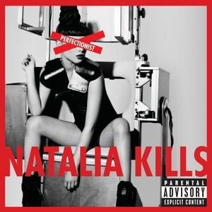 Perfectionist album cover