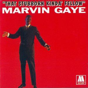 That Stubborn Kinda Fellow album cover