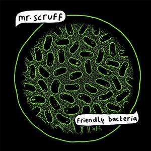 Friendly Bacteria album cover