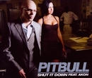 Shut It Down (Single) album cover