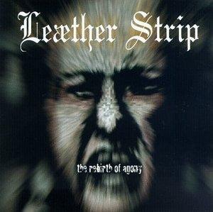 The Rebirth Of Agony album cover