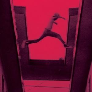 The Ecstatic album cover