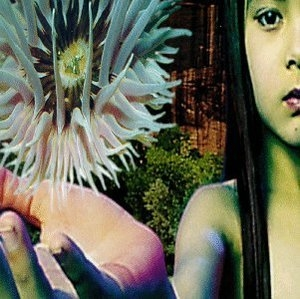 Lifeforms album cover