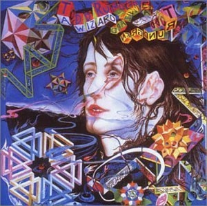 A Wizard A True Star album cover