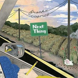 Next Thing album cover