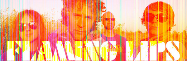 The Flaming Lips image
