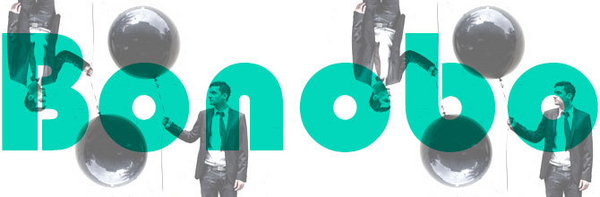 Bonobo featured image