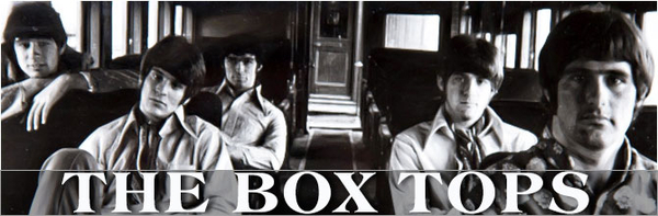 The Box Tops image
