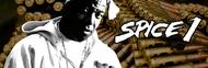 Spice 1 image