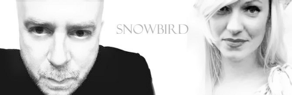 Snowbird image