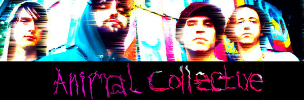 Animal Collective featured image