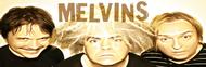 Melvins image