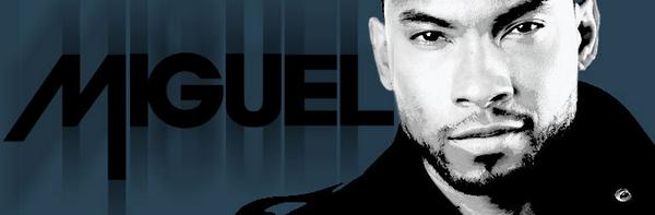 Miguel image