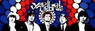The Yardbirds image