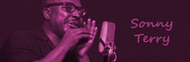 Sonny Terry image