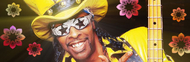 Bootsy Collins image