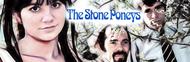 The Stone Poneys image
