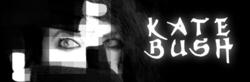 Kate Bush image